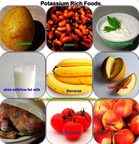 potassium cookbook delicious potassium recipes to add to your daily diet books potassium rich foods healthful diet and nutrition