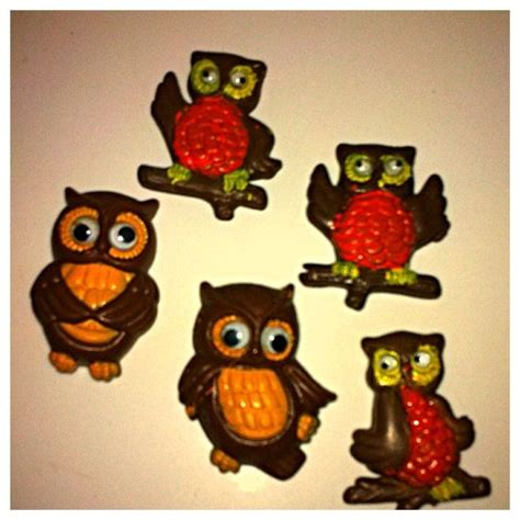 Owl Kitchen Accessories by 1000 Ideas About Owl Kitchen Decor On Owl