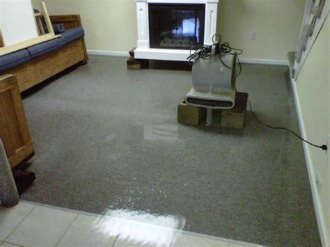 upholstery cleaning alexandria va carpet cleaning alexandria alexandria va company profile