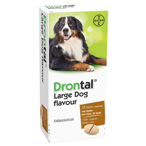 canapé pour grand chien drontal large pour grand chien