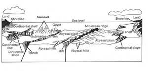 Floor Diagram ocean floor diagram diagram site