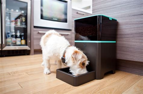 Automatic Pet Feeder Techie Divas Guide To Gadgets by Petnet Raises 1 125m To Make A Smart Food Dispenser For