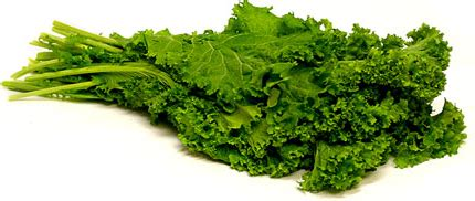 mustard greens information recipes and facts