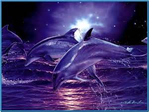 Pics photos free download dolphin screensavers 1 0 free wild animal
