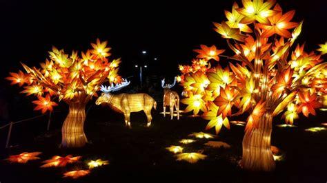 calgary zoo lights admission calgary zoo cancels illuminasia citing economic challenges