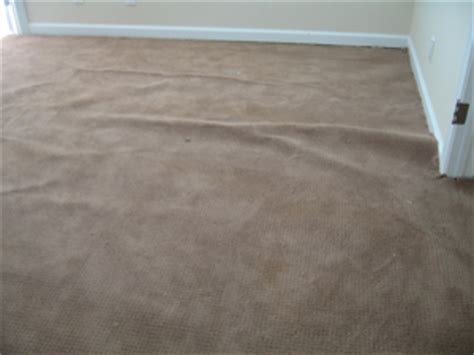 Buckled Carpet by Carpet Amp Upholstery Cleaning Advice What Causes Wall To