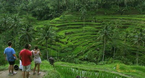 bali activities tours and activities in bali ubud tour bali sightseeing day tours tourist