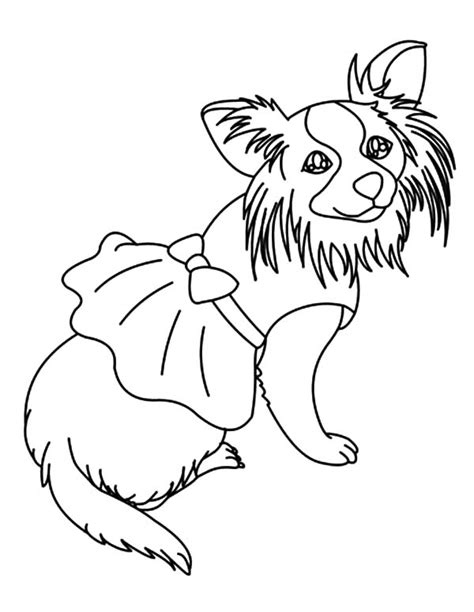 chiwawa puppies coloring pages free coloring pages of how to draw chihuahua