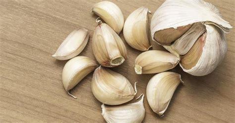 ate garlic garlic botulism livestrong