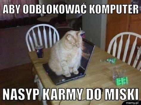Cat Laptop Meme - dwie twarze ryszarda petru memy pl