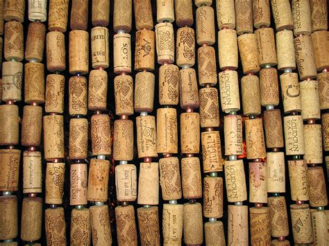 wine cork curtain cork curtain photo mb photos at pbase com