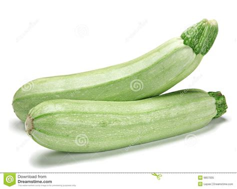 vegetables zucchini zucchini vegetable royalty free stock photo image 9857005