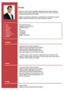 Cv Sjabloon Gratis Downloaden 17 best images about gratis cv sjablonen on
