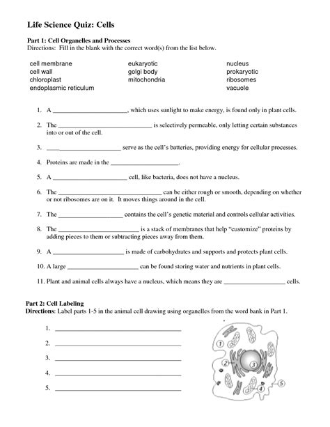 cell structure and processes worksheet cell structure and function worksheet answer key prepware pilot activation code