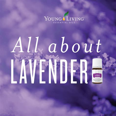 Living Lavender make and take diy solid perfume lockets