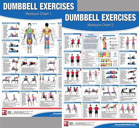 printable fitness poster dumbbell exercises workout 2 poster professional wall