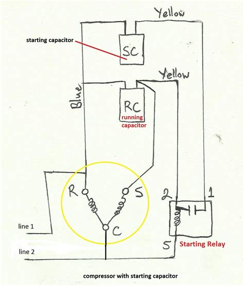 refrigeration compressor wiring diagram online wiring how to connect capacitor to motor impremedia net