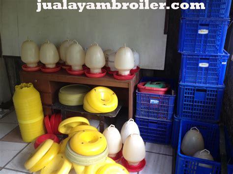 Jual Minyak Bulus Di Jakarta Timur jual ayam broiler di lebak bulus jakarta selatanjual ayam