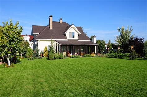 houses with big backyards growing grass from seed landscaping network