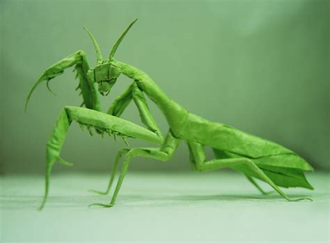 praying mantis origami bored panda