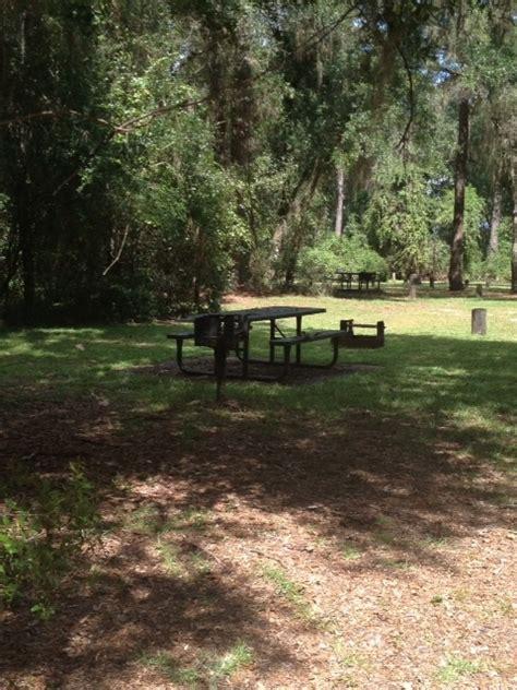 ocala national forest lake eaton cground silver