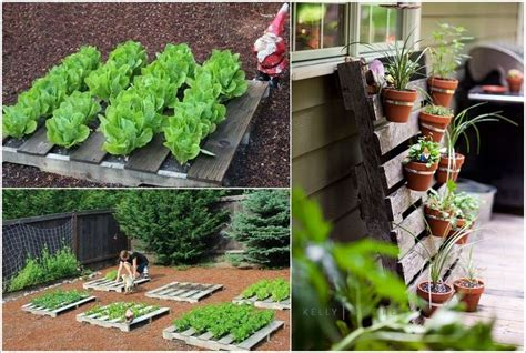 diy garden projects 25 amazing diy pallet garden projects