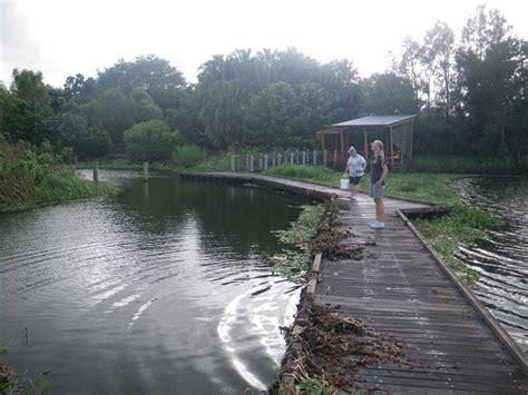 mackay botanical gardens mackay water quality monitoring department of environment