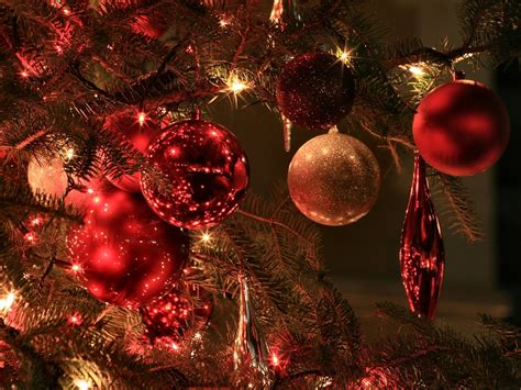 tree with ornaments and lights free picture photography portrait gallery