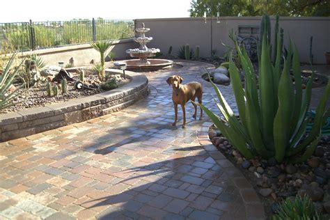 docs backyard beyond brick tucson inc tucson arizona proview