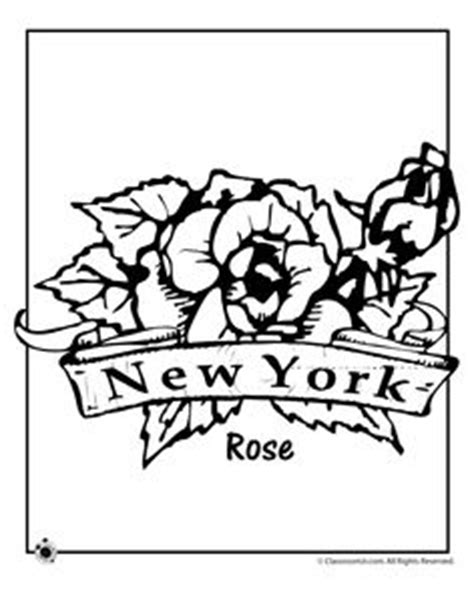 state flower on pinterest flower coloring pages us
