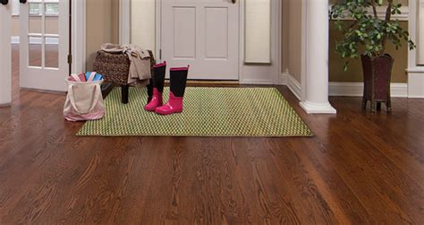 Entry Runner Rug by Front Entrance Rugs Rugs Ideas
