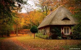 Cozy House by Cozy Houses In The Woods 20 Photos Angryboar Com Magazine