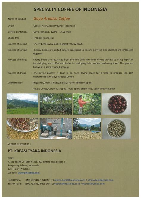 Arabica Gayo Specialty dashboard dgned membership services