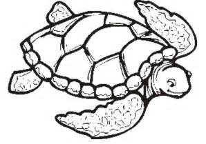 turtle coloring page sea turtle coloring pages coloring home