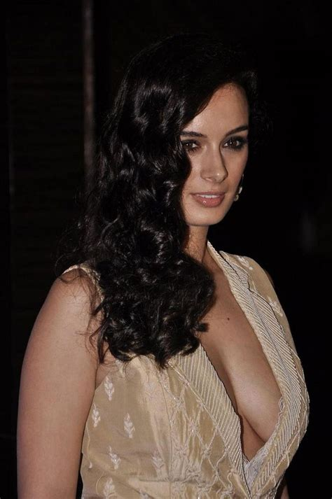 evelyn sharma new movie sexy evelyn sharma s stunning pose movie news page 6