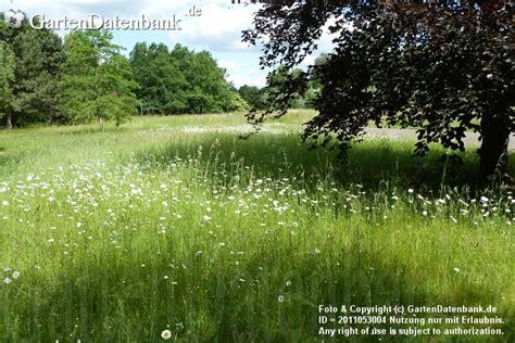 Britzer Garten Abonnement by News Britzer Garten Im Sommer