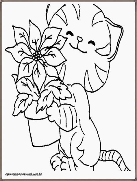 gambar bintang kucing hitam putih  diwarnai cat