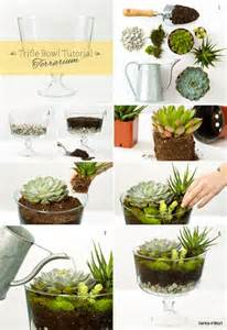 Unique Planters For Succulents terrariums vases and two other diy ideas made from a