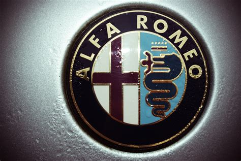 alfa romeo emblem alfa romeo wallpaper logo wallpapersafari