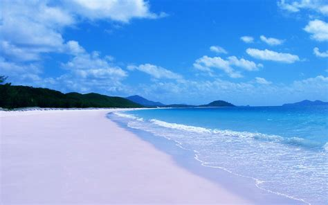 summer beach wallpapers 68 images