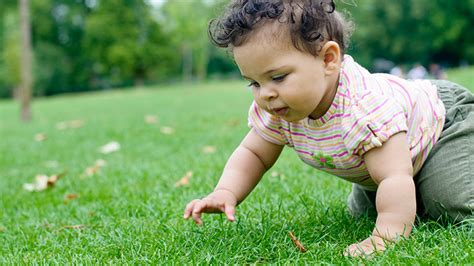 baby in crawling kid infant crawling when do babies crawl what to expect