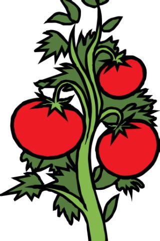 vegetable garden clipart vegetable garden clip cliparts co
