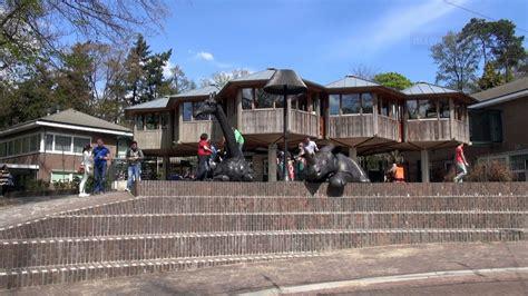 burgers zoo visit  arnhem netherlands hd youtube