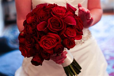 rose themes photos red bouquet of flowers explore eccbell s photos on