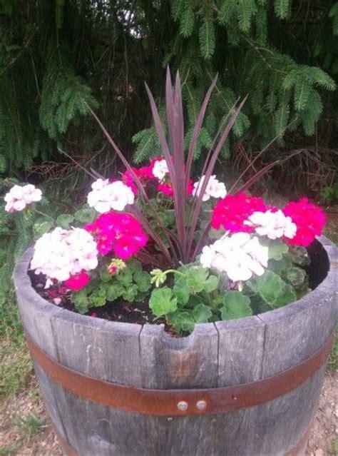 half whiskey barrel planter best 25 whiskey barrel planter ideas on half