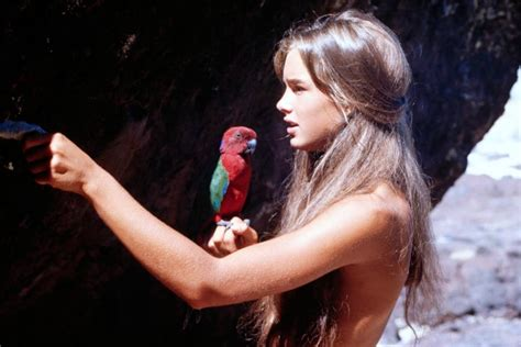 film blue lagoon online download the blue lagoon for free 1080p movie torrent