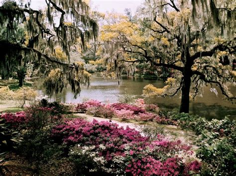 gardens in south carolina