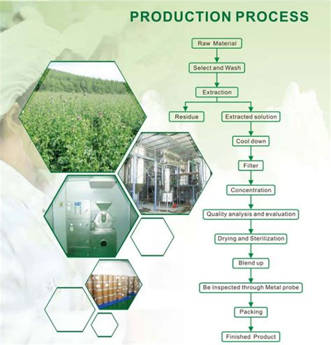 vlsi design for manufacturing yield enhancement maca extract maca root extract 파우더 공급 업체 maca root pe 제조