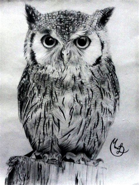 dibujos realistas buho 17 mejores ideas sobre dise 241 o de tatuaje de b 250 ho en