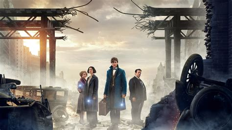 where to find wallpaper wallpaper fantastic beasts and where to find them 5k